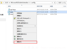 IIS Manager 配置文件修该,允许跨域CORS访问
