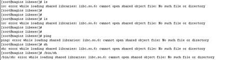 122717 0700 errorwhilel1 - error while loading shared libraries: libc.so.6 误删除libc.so.6急救办法,